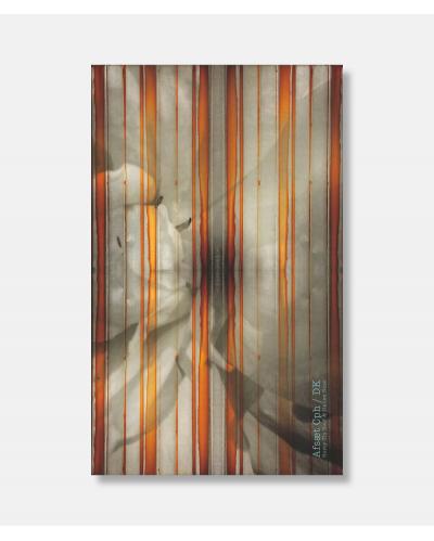 Rusted Tin Roof & Italian Rose - Silketørklæde 180 cm x 109 cm