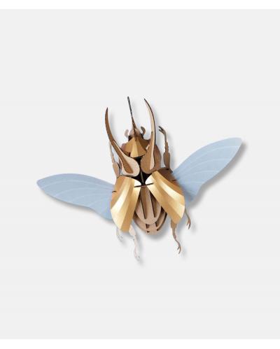 Model Atlas Beetle DIY Kit