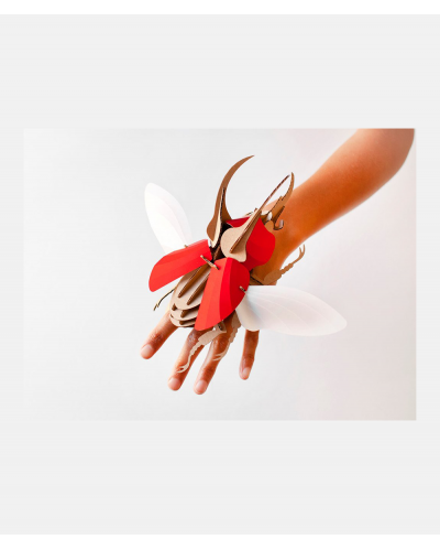 Model Stag Beetle Red DIY Kit