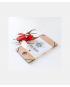 Model Stag Beetle Red DIY Kit