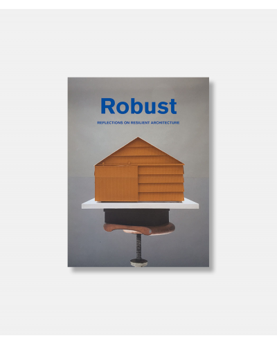 Robust - Reflections on Resilient Architecture