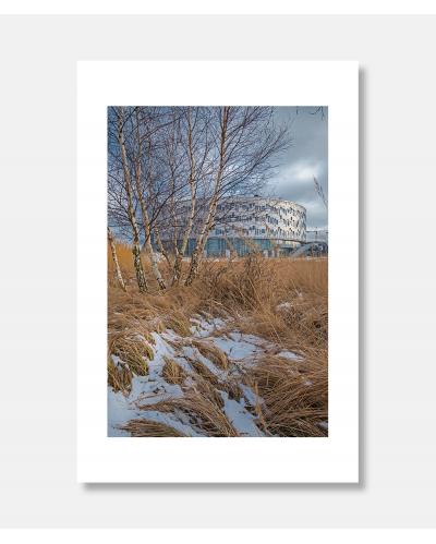 Kalvebod Fælled Skole - arkitekturfotografi Jens Markus Lindhe