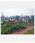 Bedre byskik - demokratisering - fællesskab - bæredygtighed